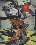 Batman vs. Tiger Shark and a tiger