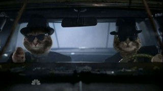 hollywood-game-night-blues-brothers-cats-web