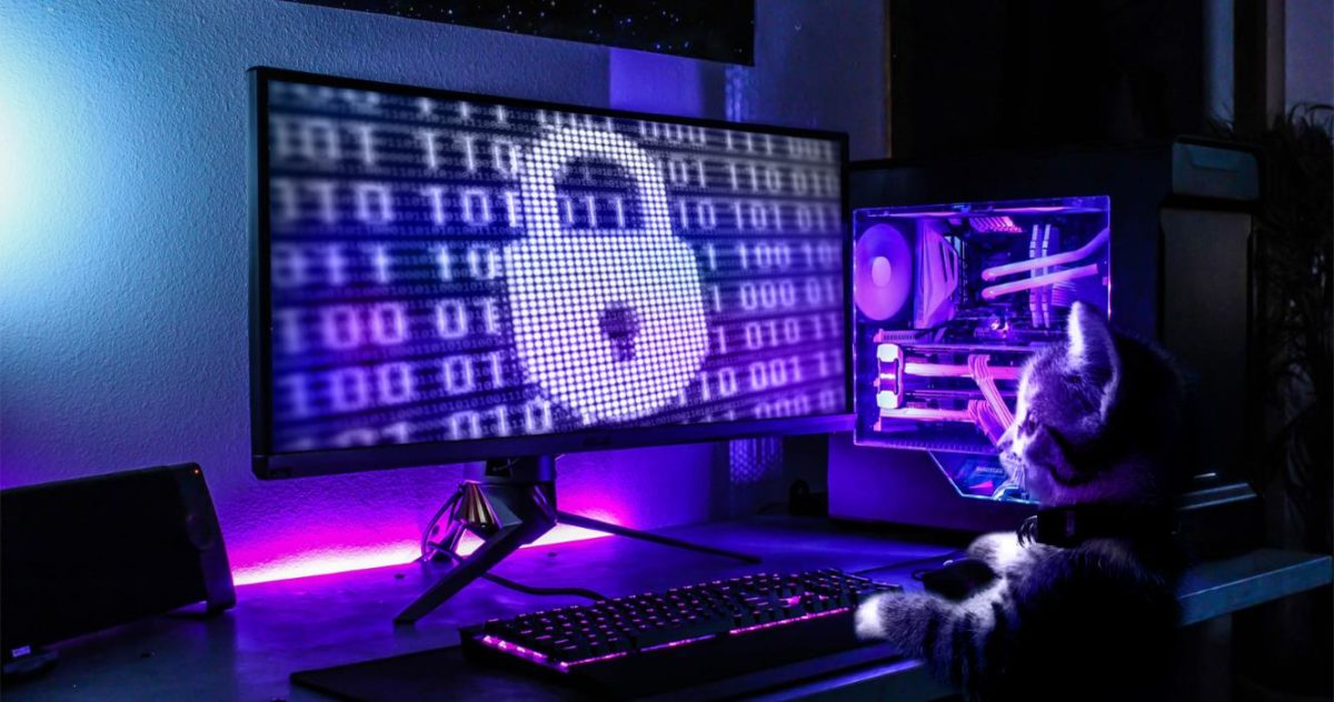 Purple dark computer room with cat